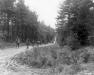 Niemcy, 18 XI 1944 rok- Kompania F z 2 Batalionu 16 Pułku przemierza las nieopodal Hamich..