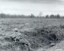 Belgia, 18 XII 1944 rok- Kompania M, 3 Batalion, 18 Pułku nieopodal lasów w Surbrodt.