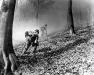 Niemcy, 8 IV 1945 rok- 16 Pułk w trakcie zmagań w lasach nieopodal Furstenberg, toczonych po przekroczeniu rzeki Wezery oraz zdobyciu wioski Werhdon.